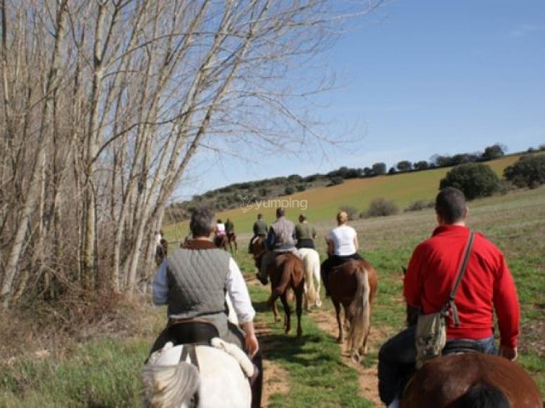 A caballo por la campina