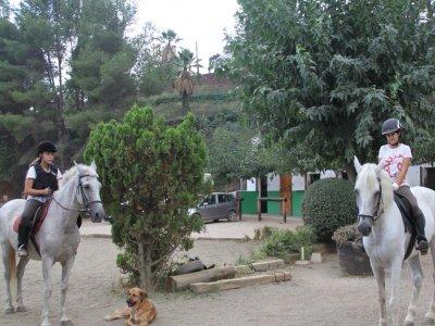 Horse La Sentíu