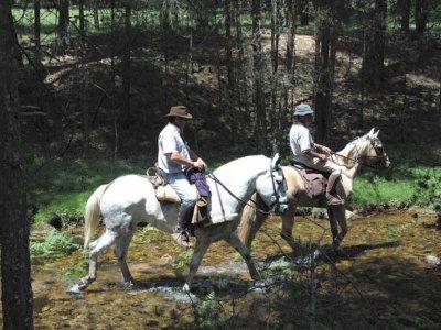 Passeggiata a cavallo di 4 ore, Covarrubias