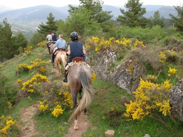 ruta a caballo desde San Leonardo de Yague