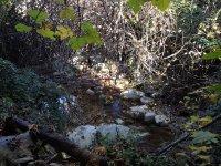 Nacimiento del Rio Cuadros