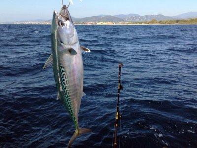 Pesca al curricán costero en Blanes, 8 horas