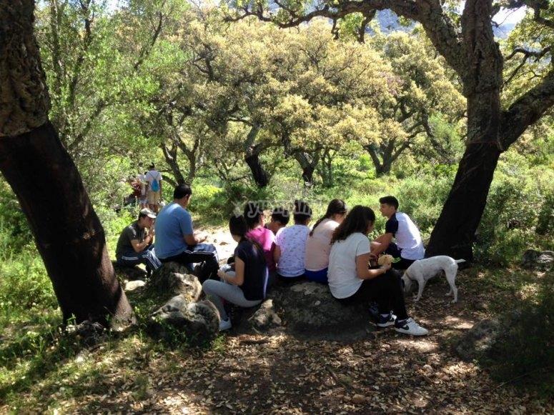 Tomando un picnic