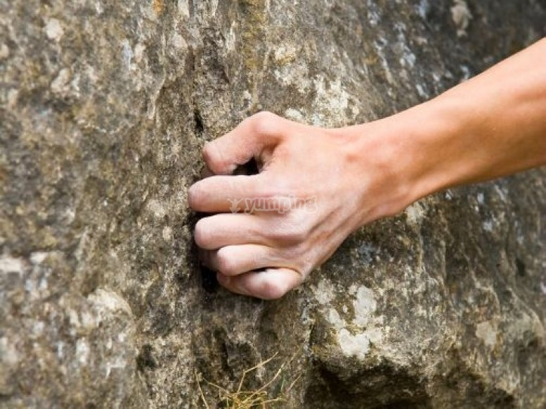 Holding on to a rock