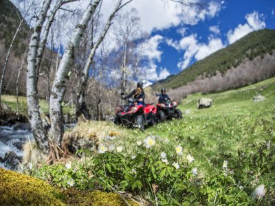 One-Seater Quad Tour in Andorra, Half Day