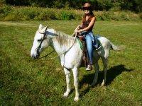 Recorrido a caballo