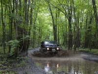 4x4 car crossing the puddle among trees