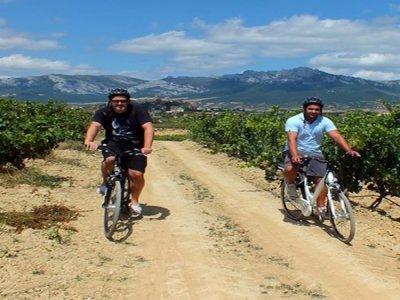 Percorso MTB a La Rioja tra vigneti di 3 ore
