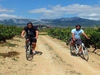 3-hour mountain bike ride in La Rioja
