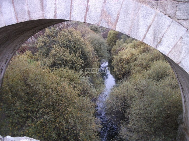 河流和桥梁