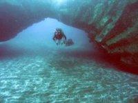 呼吸器潜水内尔Anemona