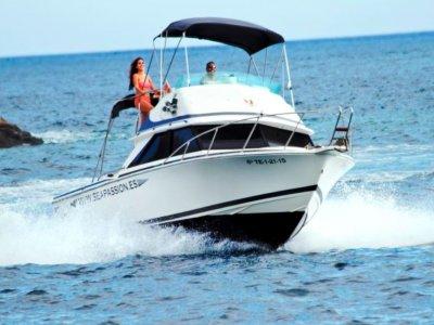 Paseo en barco con snorkel en Los Gigantes 4h