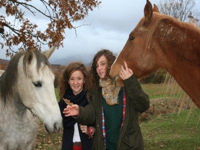 Ruta a caballo en Riaza durante 2 horas