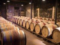 与葡萄酒厂见面