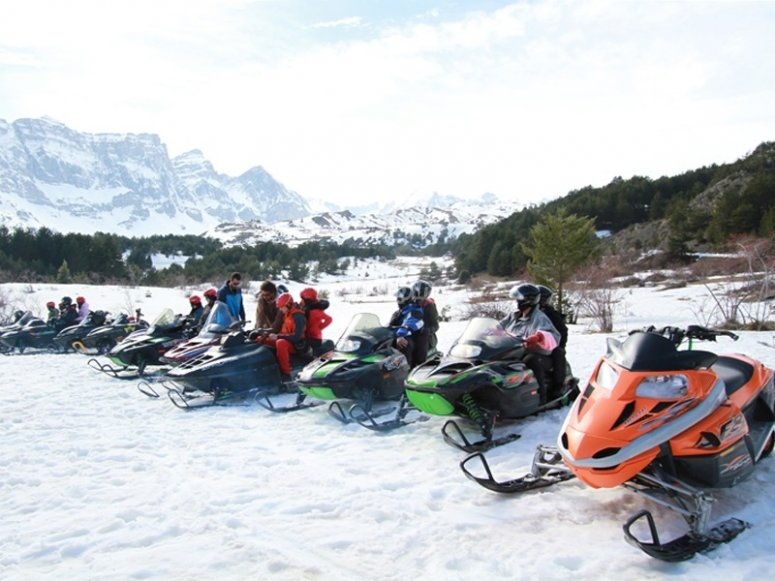 All the snowmobiles