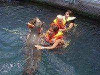 Nadando con ellos
