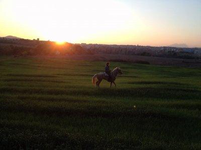 Horseback in Roca del Vallés