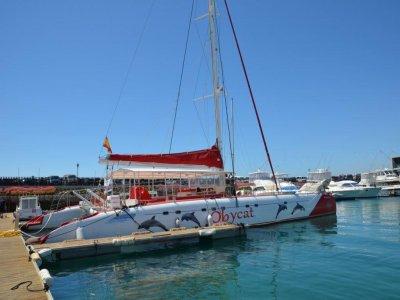 Oceanarium Explorer Paseos en Barco