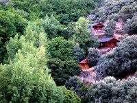 Imagen de 3 cabanas