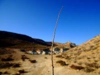 Conoce el desierto de Almeria