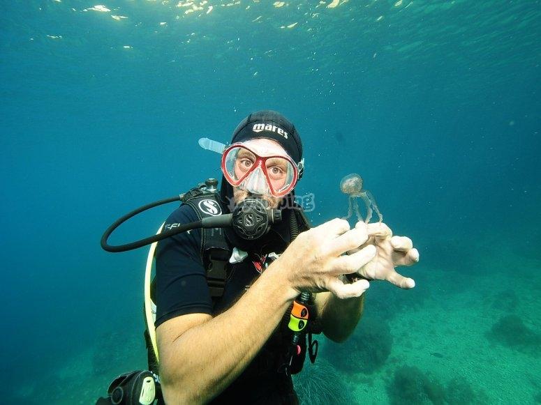在海底互动