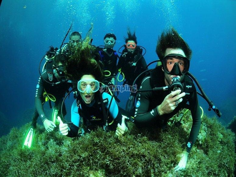 与朋友一起潜水的课程