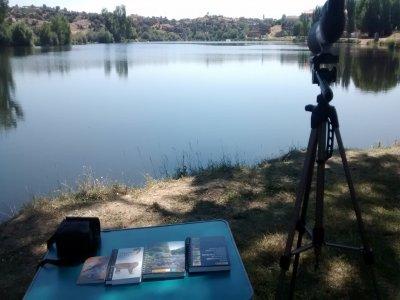 Iniciación a la ornitología en Ledesma