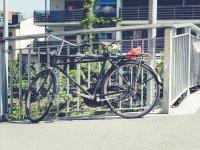 城市自行车粉红色自行车脚踏城市