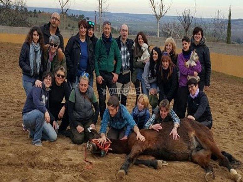Gruppo con il cavallo sdraiato