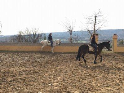Clase de equitación Torrelaguna y menú cochinillo