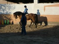 on the track with the horse