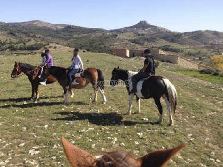 Conociendo nuevos rincones a caballo