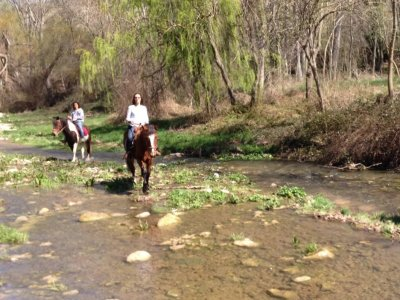Horseback ride and class in Morella 90 minutes