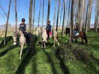 Paseo por el campo a caballo