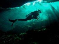 在黑暗中潜水