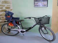 家庭自行车