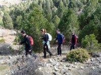 Hacer senderismo en el Monte Ardal medio día