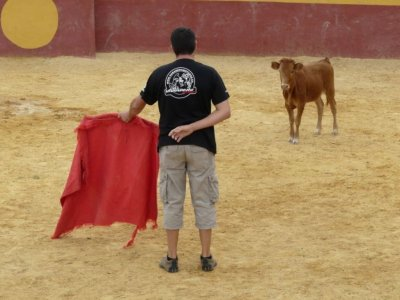 Bachelor party Aranjuez bullfighting