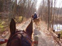 Ruta a caballo fin de semana y alojamiento