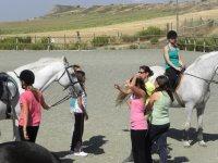 Con i cavalli