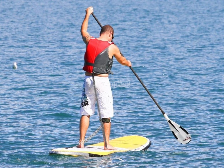 Paddle surf board