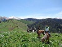 Rutas a caballo en la provincia de Sevilla