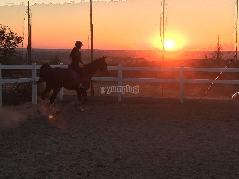 骑马学校的练习