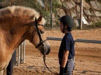 将小马带到马stable里