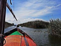 Visit the Albufera of Valencia