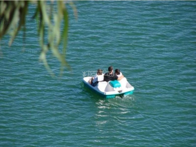 parents and children in pedal boats
