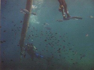 Club de buceo Asse