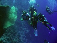 Diving with Asse