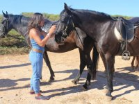 Caressing the black horse