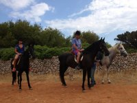 Tour with three horses